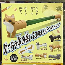 全新 奇譚 長長身體貓鉛筆套 正版 日版  全套六款$200 散賣每款$40