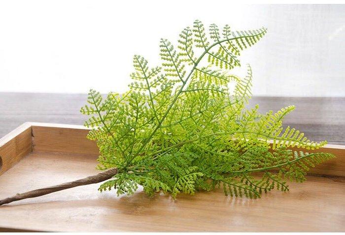 蕨 蕨類 綠蕨 綠色 仿真植物 裝飾 佈置 仿真花 仿真葉 假葉子 假花 裝飾 佈置 森林風 北歐風 花藝 插花 花木馬