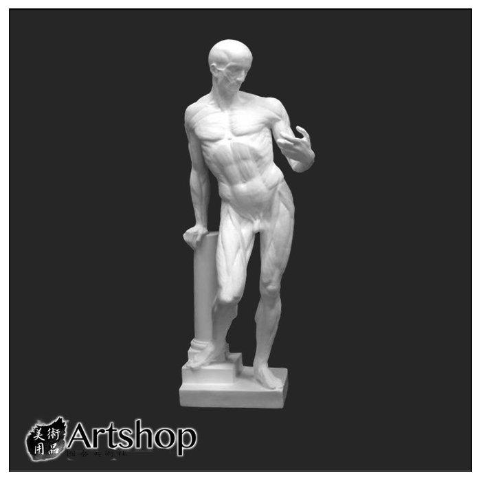 【Artshop美術用品】訂購商品 半面石膏像 素描用石膏像 素描靜物 解剖者 運費另計350