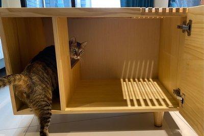 初木 Pinkoi 單層貓砂木櫃