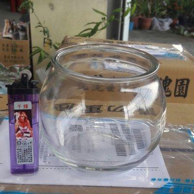園藝資材 **  水耕植物用玻璃空瓶/450ml **  圓肚盆/ 10cm/ 含蓋及塑膠盆【花花世界玫瑰園】R