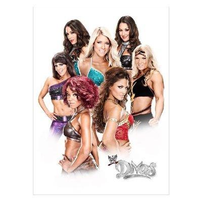 ☆阿Su倉庫☆WWE摔角 Divas 5x7 Unsigned Photo DIVAS彩色圖卡照片 熱賣特價中