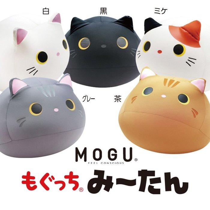 日本【MOGU】可愛胖貓 抱枕/舒壓靠枕/枕頭/造型坐墊