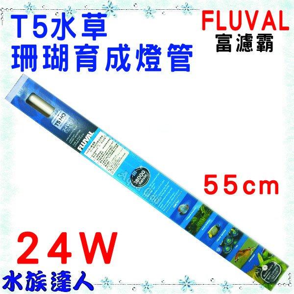 【水族達人】【燈管】赫根HAGEN富濾霸FLUVAL《T5水草珊瑚育成燈管 24W HG-A1657》