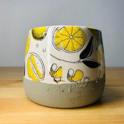 Rainxpluie 知雨若泥 植物•多肉•空氣鳳梨•花盆•陶盆•木•花器•花瓶•盆器 莫非是米津玄師的《Lemon》