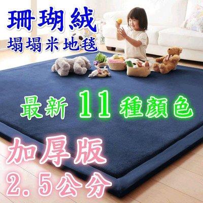 日式加厚版2.5公分 新品珊瑚絨塌塌米地毯 可定制尺寸 超纖細珊瑚絨 加厚地毯地墊 爬行墊 寶寶爬行墊
