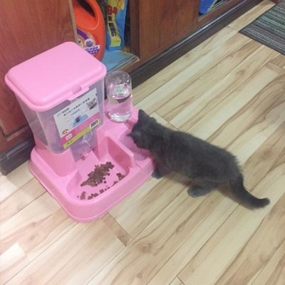 貓碗雙碗貓咪食盆狗碗雙碗不銹鋼寵物食盆小狗自動飲水狗盆貓盆 全館免運【MK Shop】