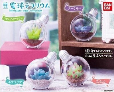 【絕版品】萬代 Bandal 盒玩 食玩 扭蛋 轉蛋  豆電球 燈泡 盆栽 植栽 多肉植物 (全套4款 一次擁有)