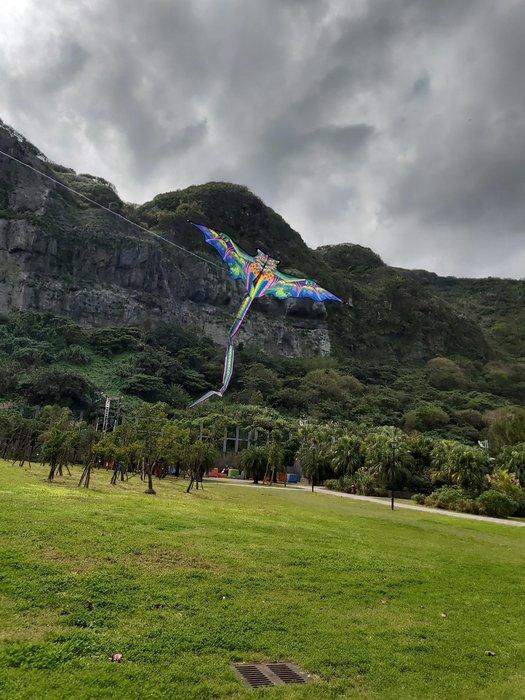 [翔飛戶外休閒] 超酷~飛天龍造型風箏-可愛風箏[直購下標區]