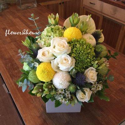 B41。期間限定。白綠黃色系盆花。祝賀開幕生日喬遷。婚禮桌花。台北花店。【Flower&House花藝之家】