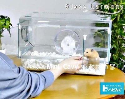 。╮♥ Mini Cavy ♥╭。日本Gex 愛鼠透視屋450 鼠籠 大 特價