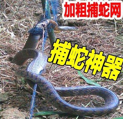 防蛇網.捕蛇網.蛇 網