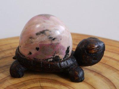(台灣玫瑰石) 木+石創作 烏龜2. 花蓮立霧溪 (台灣師傅創作)