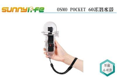 《視冠 高雄》SUNNYLIFE OSMO POCKET 60米潛水殼 三軸穩定器 運動攝影機 VLOG 潛水殼 公司貨