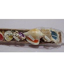 貝殼造型蠟燭 立足 CANDLE
