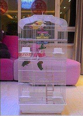 新款黑色平頂大鸚鵡籠 鳥籠 玄鳳籠 群鳥籠(配中隔網 玩具) 玩具是木質類,不是有色玩具).