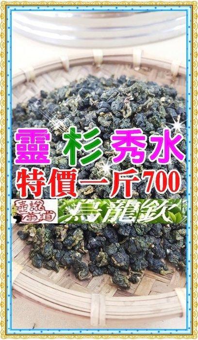 手採高山烏龍茶/特價一斤700元/買五斤送一斤《靈杉秀水》『壺說茶道』【欽選茶葉、物超所值】