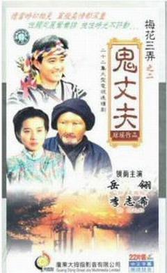 【梅花三弄之鬼丈夫】岳翎 李志希 22集2碟DVD