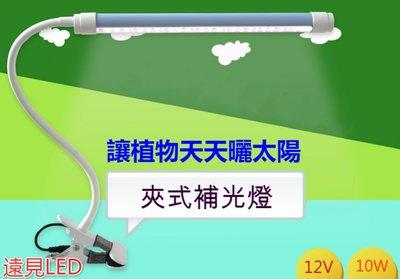 ♥遠見LED♥10W LED夾式 植物燈 夾式植物生長燈 LED植物燈 全電壓 多肉 育苗 led材料批發