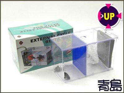 AA。。。青島水族。。。D-632-EX台灣UP雅柏-----動力式鬥魚盒==缸外式