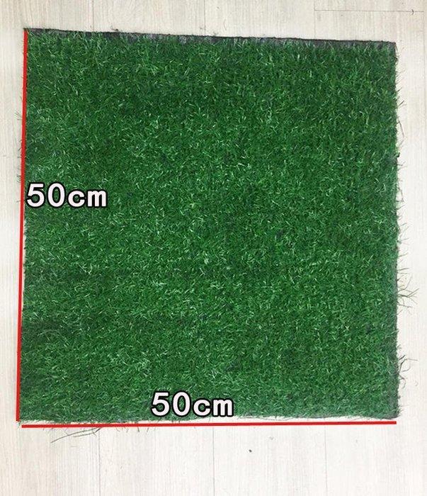 多用途【超柔軟仿真草皮】50cm*50cm 2公分高 人造草皮 寵物運動 人工草坪 機車踏墊 綠植地毯 布置