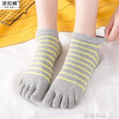 五指襪女 夏季五指襪女士薄款透氣短筒分腳趾純棉隱形短襪淺口全棉五趾襪子