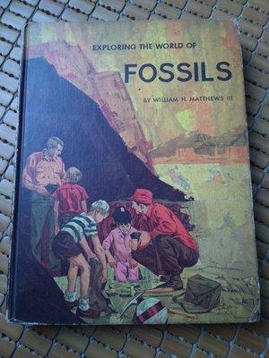 不二書店 EXPLORING THE WORLD OF FOSSILS 探索化石世界 精裝