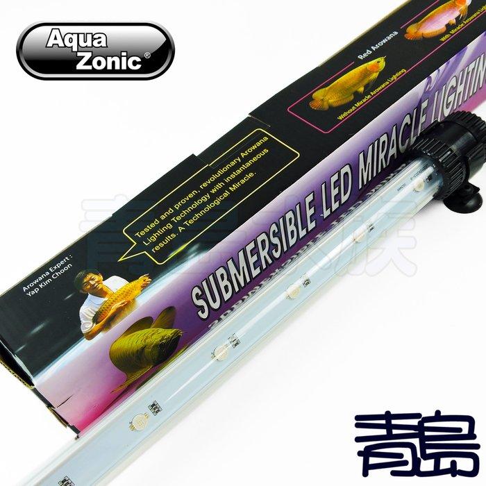 A。。。青島水族。。。WL107新加坡Aqua Zonic艾柯-----OF仟湖LED增豔水中燈==紅龍/56CM/2尺