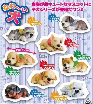 【動漫瘋】轉蛋 貪睡狗 休眠犬 一套8款販售 公仔 柴犬 雪納瑞 賤狗 [ 非 休眠動物園 吼 野生動物 休憩的動物]
