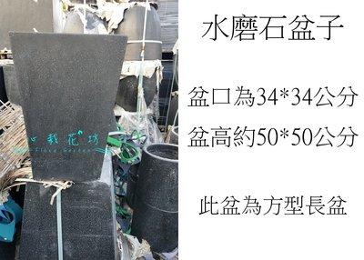 心栽花坊-水磨石盆器/水磨石花盆/水磨石花器/資材/周邊/售價1400特價1200