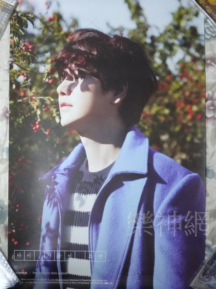 SUPER JUNIOR圭賢Kyu Hyun 再次 秋來 If Fall Comes Again【原版宣傳海報:A款】