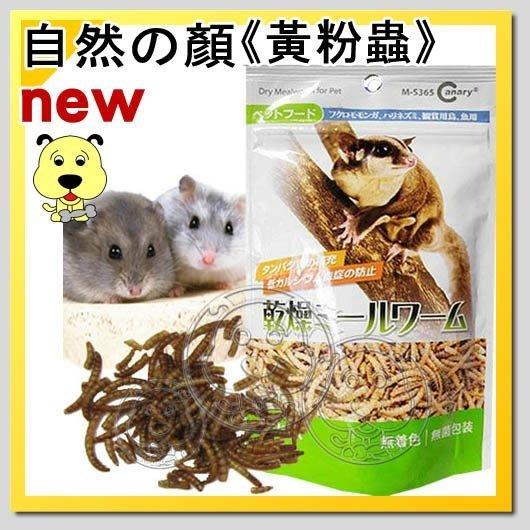 【幸福培菓寵物】【自然の顏】高蛋白黃粉蟲-30g   特價99元