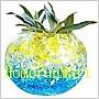 魔晶土50公克魔晶球48款可挑 水晶球 大顆香晶球 水晶泥 水晶寶寶 水晶土 水耕彩色土壤養魚缸造景