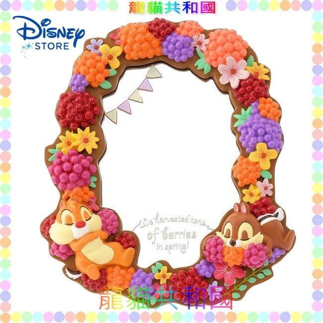 ※龍貓共和國※日本迪士尼商店DISNEY《Chip & Dale 奇奇蒂蒂 水果 鏡子 化妝鏡 梳妝鏡 桌上立鏡 擺飾》