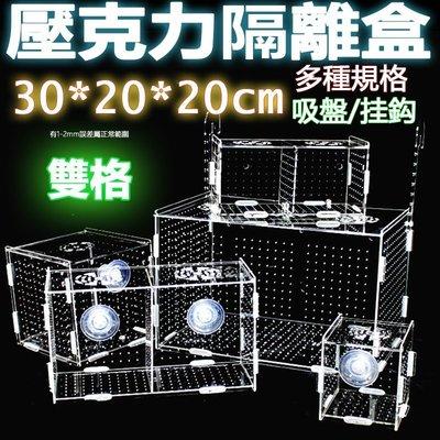 雙格30x20x20cm超透亞克力隔離盒【掛勾/吸盤款 任選】壓克力繁殖盒、壓克力隔離盒、壓克力拍照盒孵化魚缸可參考