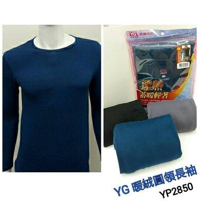 【晉新】YG_貨號YP2850_速熱暖絨圓領長袖衫_天鵝牌_男性內衣_原價240元_尺寸M~XL。