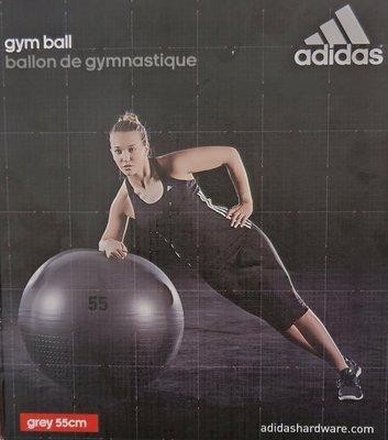 全新adidas gym ball 伸展減壓瑜伽球 韻律球 訓練球 禮物