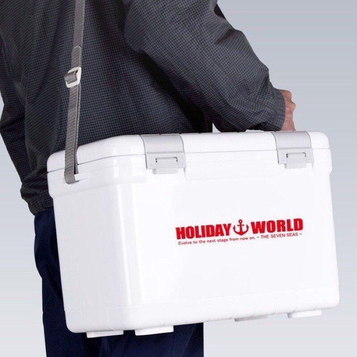 《屏東海豐》日本製造 HOLIDAY 伸和 WORLD 高保冷冰箱 22升