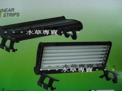 B。。。青島水族。。。LM-244T5台灣Macro現代----快樂鼠T5鋁合金4燈 四燈 含燈管==2.2尺