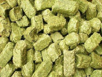 【優比寵物】優質加拿大進口牧草磚《20公斤(免運費)》/ 牧草塊(促銷優惠價) 高雄市