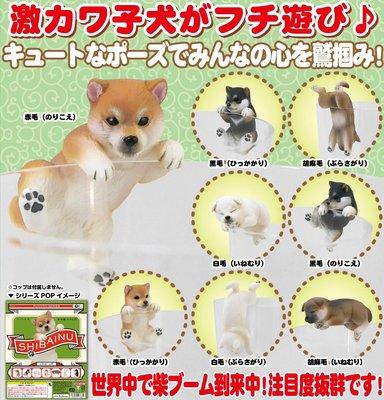 【JPS日貨】日本全新現貨日空版 扭蛋 轉蛋 柴犬系列 柴犬 杯緣子 一套八款 公仔 桌上小物 療癒小物