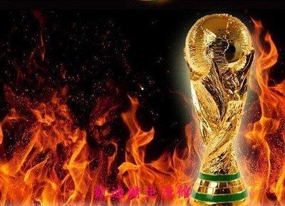 【凱迪豬生活館】巴西世界 杯大力神杯 1 1金屬足球獎杯模型36cm球迷品紀念品KTZ-201001
