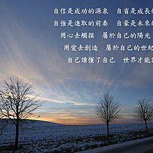 【VIENNA】《手圍20/16mm版寬》緬甸玉/冰種貴婦秋香飄綠葉翡翠/玉鐲/手鐲X/Y10