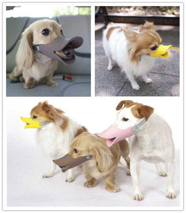 幸福♥SHOP 無毒矽膠狗狗鴨嘴套 寵物用黃色小鴨嘴套 呱呱 ~超軟Q