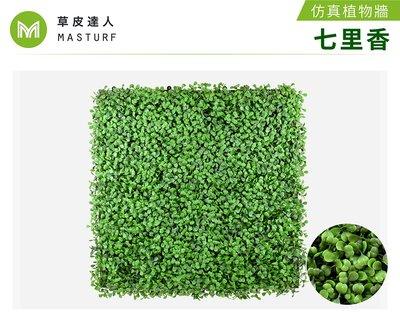 【草皮達人】七里香 抗UV款 仿真植物牆 (280元/片,整箱10片特價2600含運)園藝 景觀 裝潢 空間佈置 設計