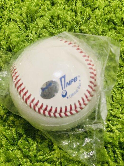 貳拾肆棒球-日本帶回日職棒公式實際比賽球/Mizuno製/有雷射標籤貼紙認證