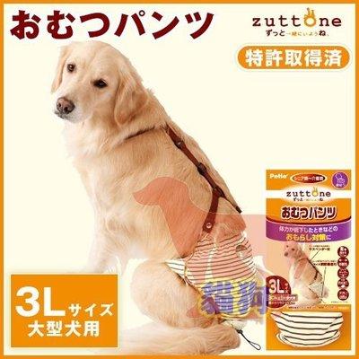 **貓狗大王**日本PETIO《老犬尿失禁用尿布褲-3L號》尿褲可重複使用