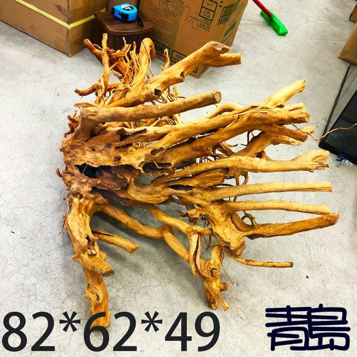 五1↓。。。青島水族。。。J-011煙燻沉木 黃金流木 莫絲 莫斯 默思 青龍石 造景==82*62*49cm