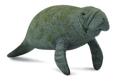 【阿LIN】88455A 海牛 PROCON CollectA 動物模型 仿真動物模型 動物