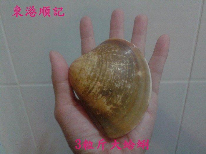 東港順記 超級鮮甜 大蛤蜊 烤肉必備食材